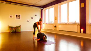 Elbinsel Yoga