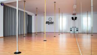 Muse Pole Dance