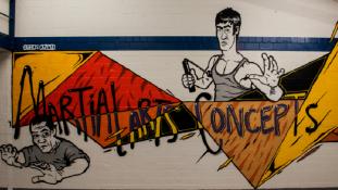 Martial Arts Concepts
