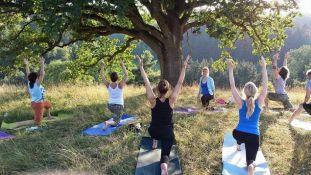 fearless yoga -  Tagesstätte Fortschritt