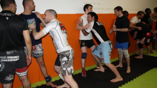 Free Fight Academy - Paris