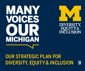Many Voices, Our Michigan - DPSS DEI Strategic Plan