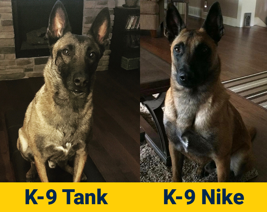 K-9 Tank and Nike