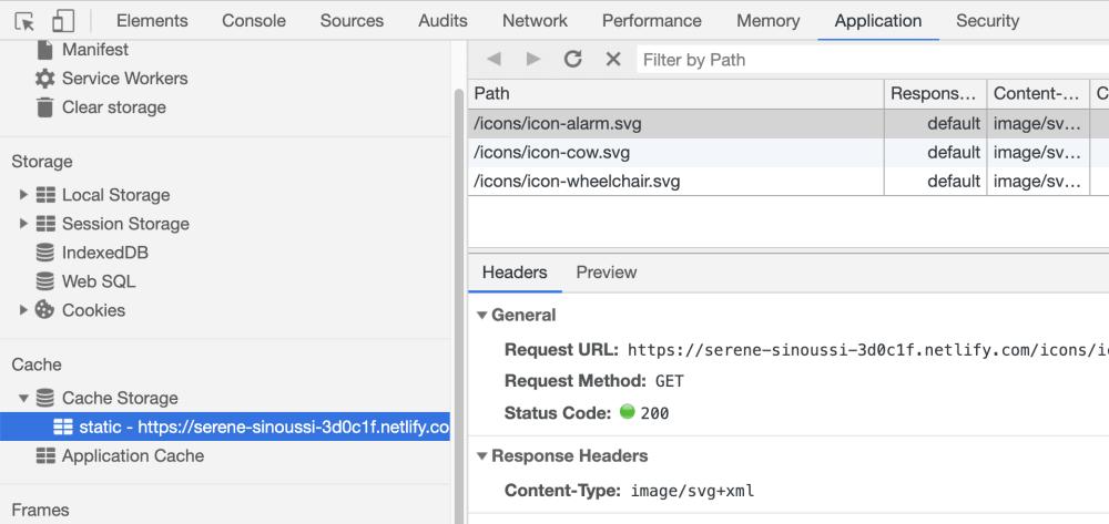 SVG inline com cache: DevTools mostrando recurso.