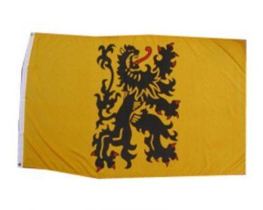 Vlag Belgische Provincie Vlaanderen