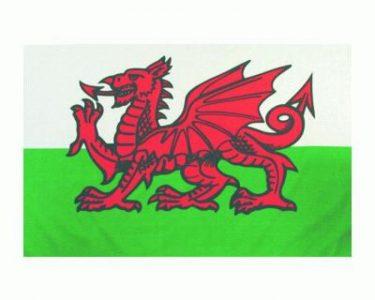 Vlag van Wales FP-58