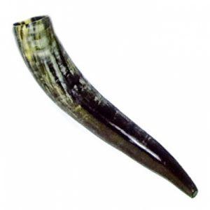 Blaashoorn - Signaalhoorn 37-40 cm lang