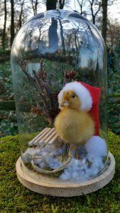 Eendje in Stolp in Kerstsfeer opgezet - geprepareerd - taxidermy