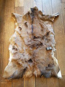 Herten huid - Vacht +/- 125 x 80 cm