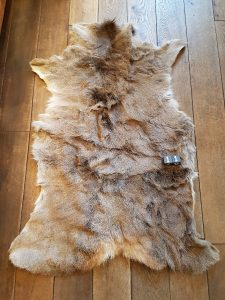 Herten huid - Vacht +/- 140 x 80 cm