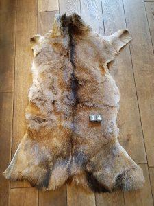Herten huid - Vacht +/- 130 x 70 cm