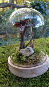 Stolp met Kever en Libelle soort - taxidermy