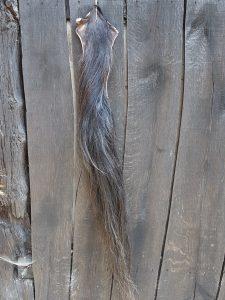 Paardenstaart donker 120 cm