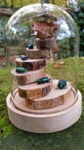 Mini stolp met 5 groene kevers in stolp