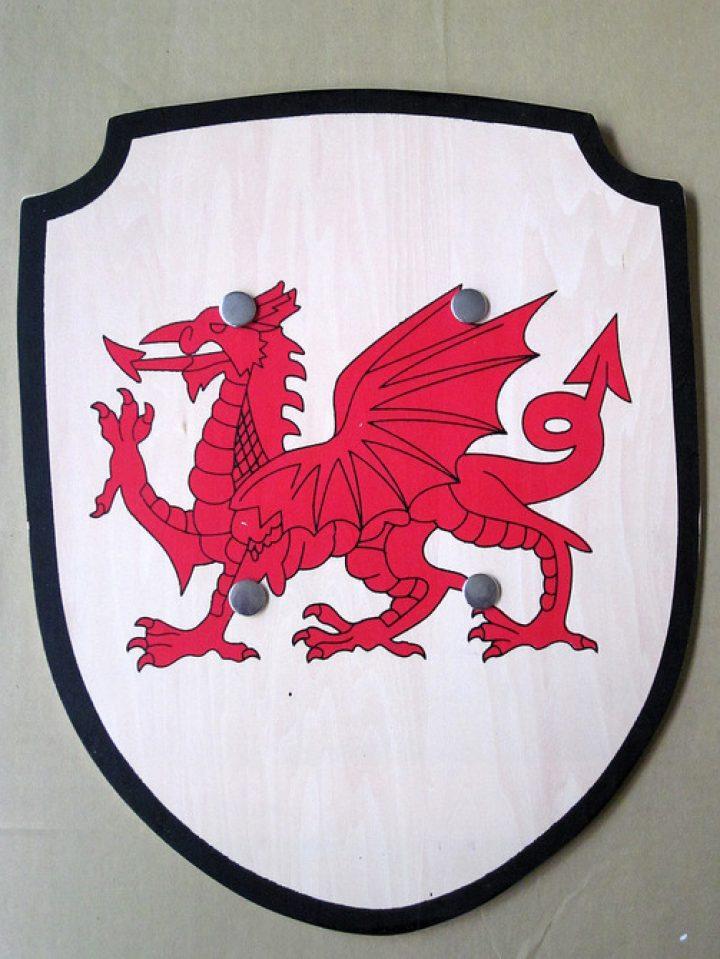 Schild met Wapen van Wales