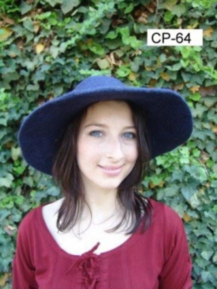 Middeleeuwse Vilten hoed