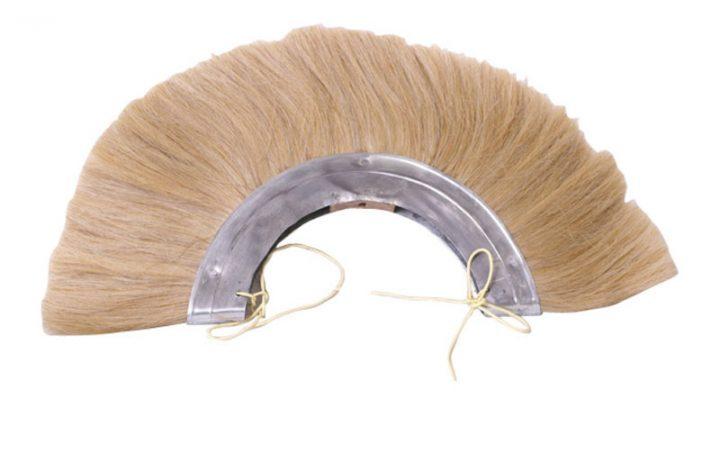 Romeinse Helmkam blond