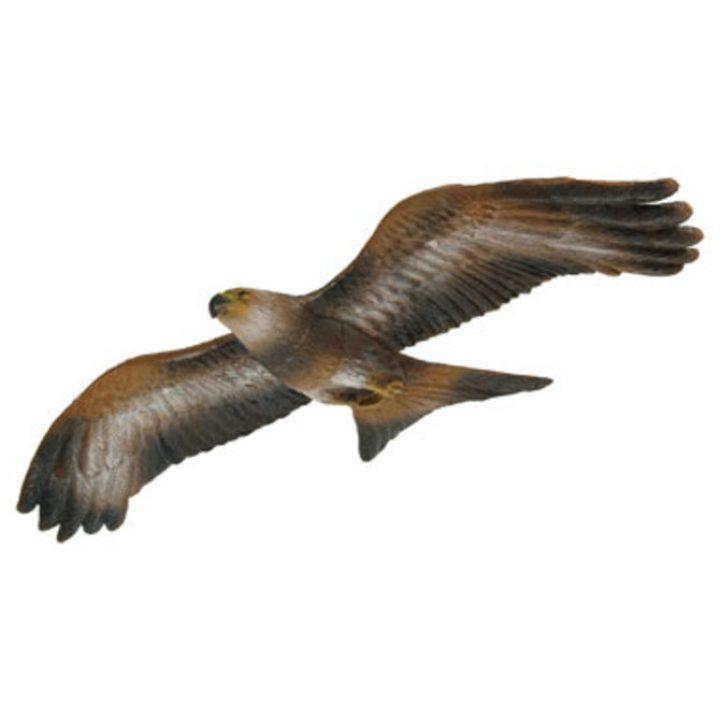 3D roofvogel BD-0000001115