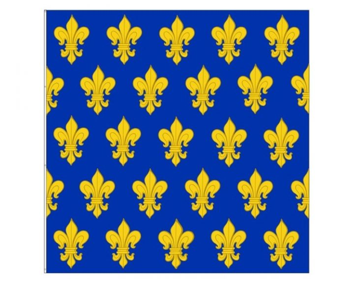 Historische Franse Lely Vlag 150x150 FP-2235