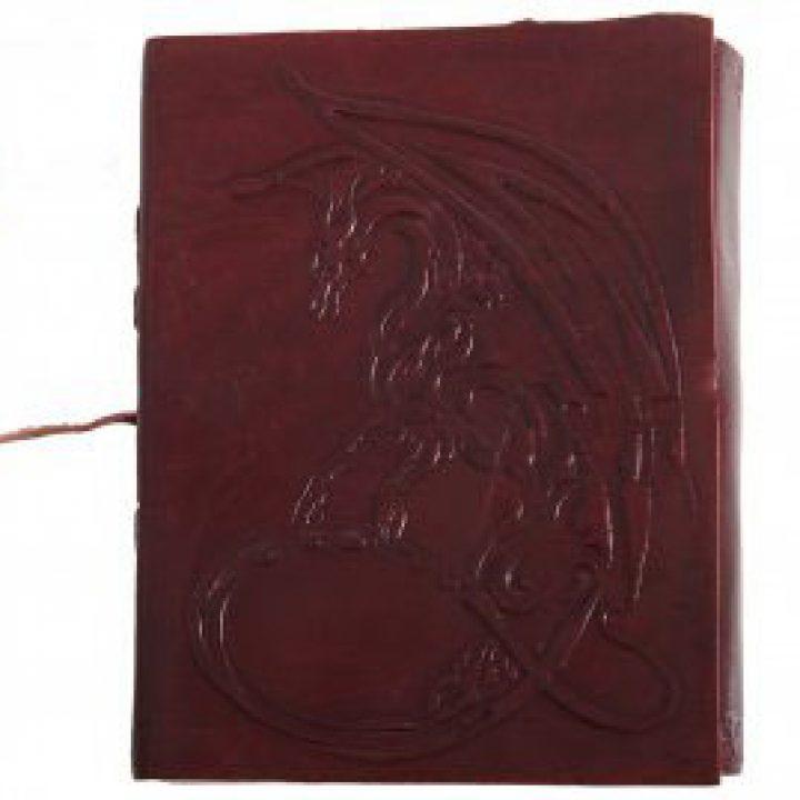 Middeleeuws Draken Notitie Boekje