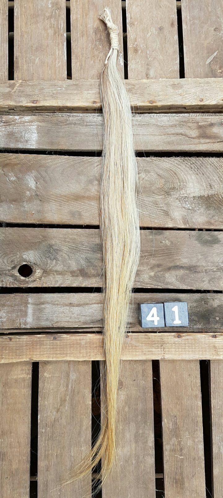 Paardenstaart Streng +/- 85 cm