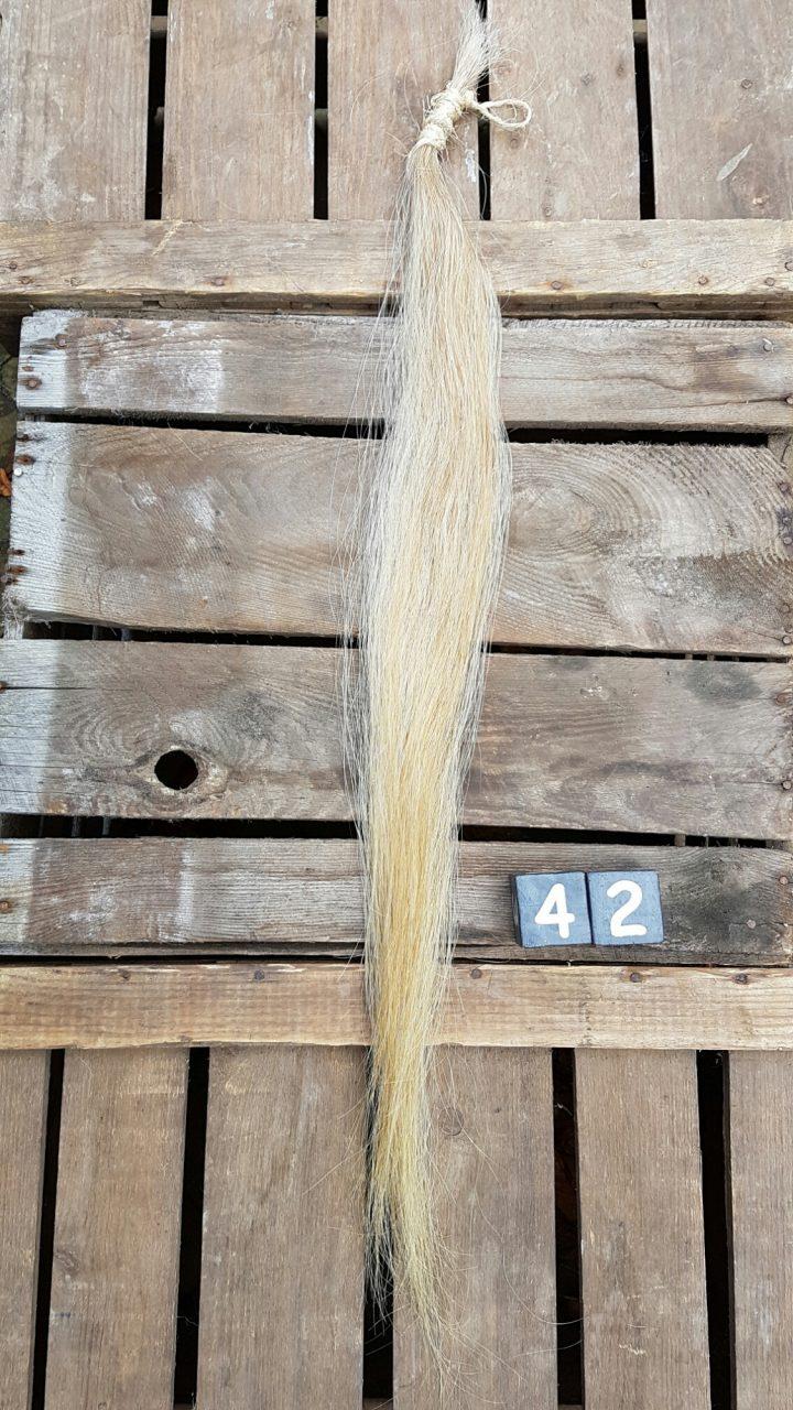 Paardenstaart Streng +/- 79 cm