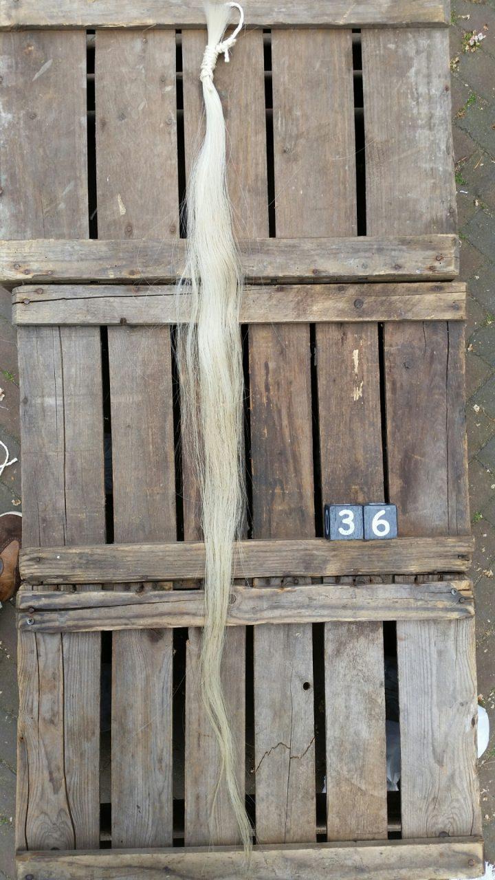 Paardenstaart Streng +/- 100 cm