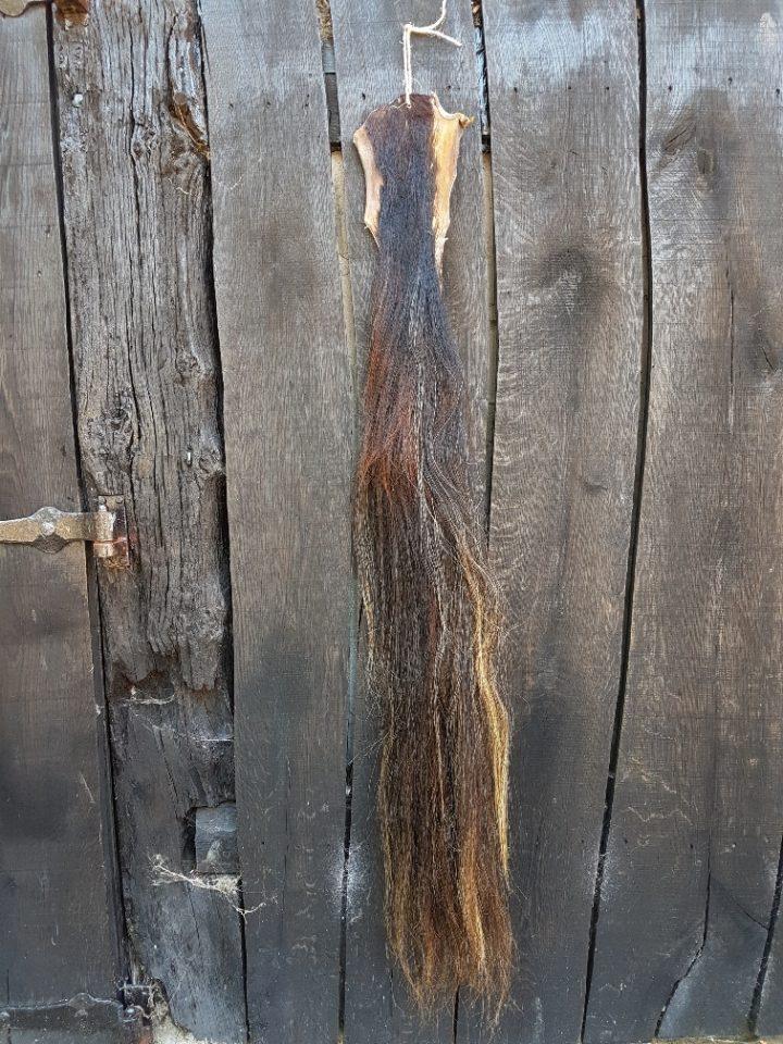 Paardenstaart gemêleerd 132 cm