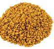 Is Fenugreek Good for Diabetes ? (Scientific explanation)