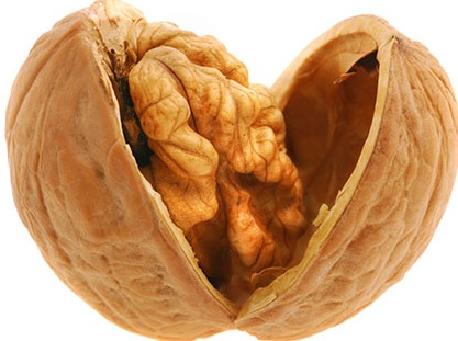 14 Health Benefits of Walnut During Pregnancy (No.1 is Best)