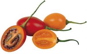 tamarillo fruit