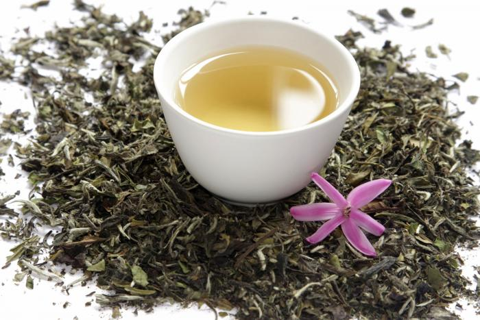 18 Health Benefits of White Tea #1 Top Beauty Treatments