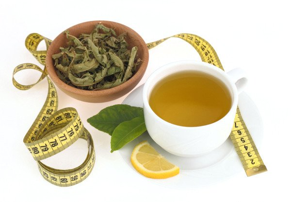 16 Scientific Health Benefits of Bignay Tea (No.12 is Great)