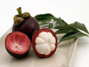 health benefits of mangosteen peel