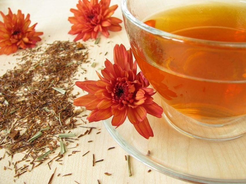 12 Scientific Health Benefits of Red Rooibos Tea for Beauty Treatments