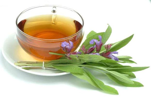 Powerful Benefits of Sage Tea for Anxiety Treatments and Overall Health