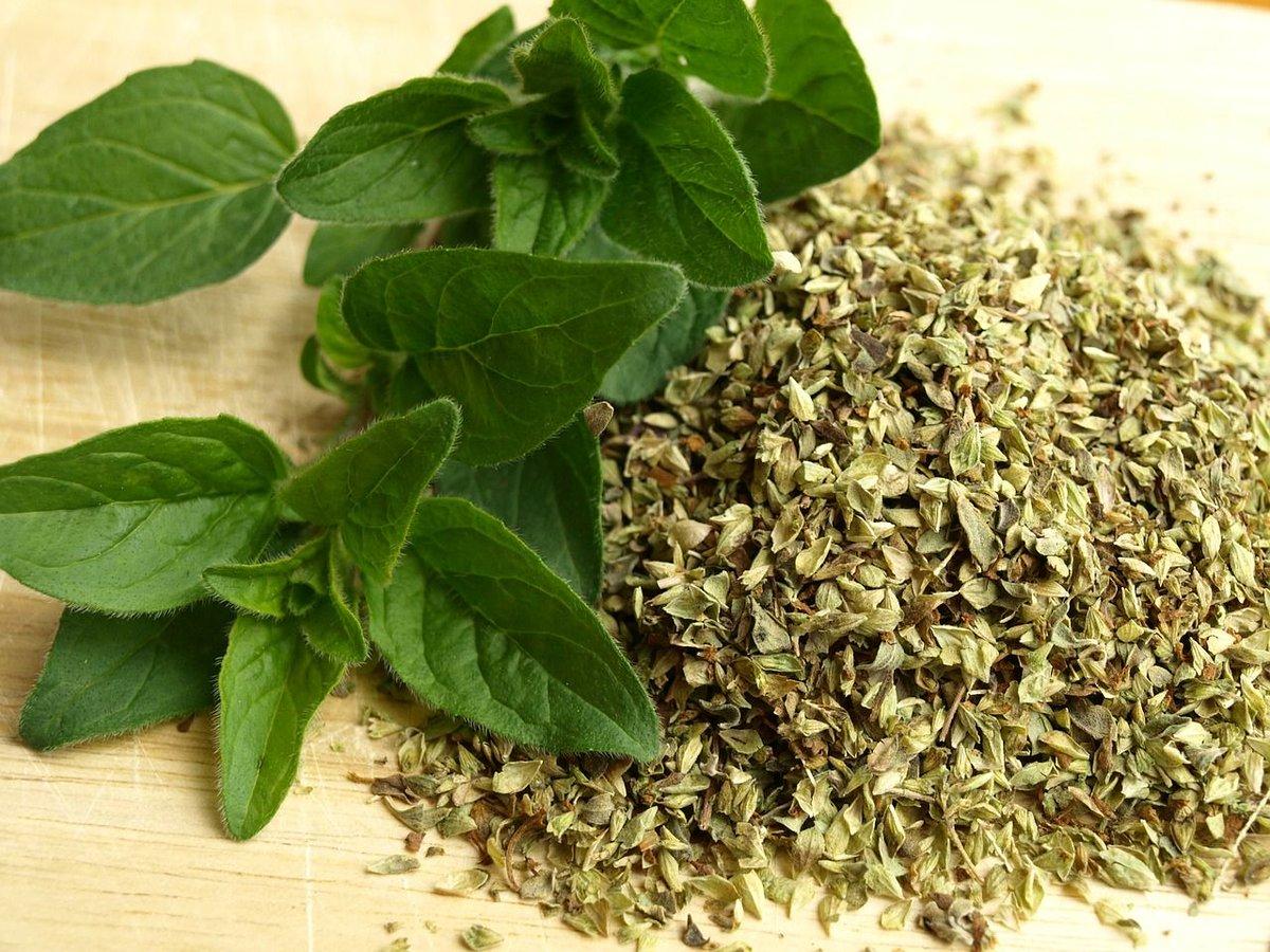 Origanum: medicinal properties 2