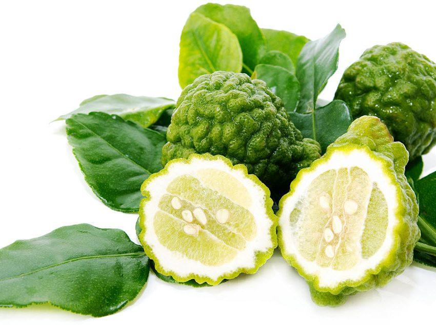 15 Top Health Benefits of Kaffir Lime – Medical Consumption – Beauty Treatment
