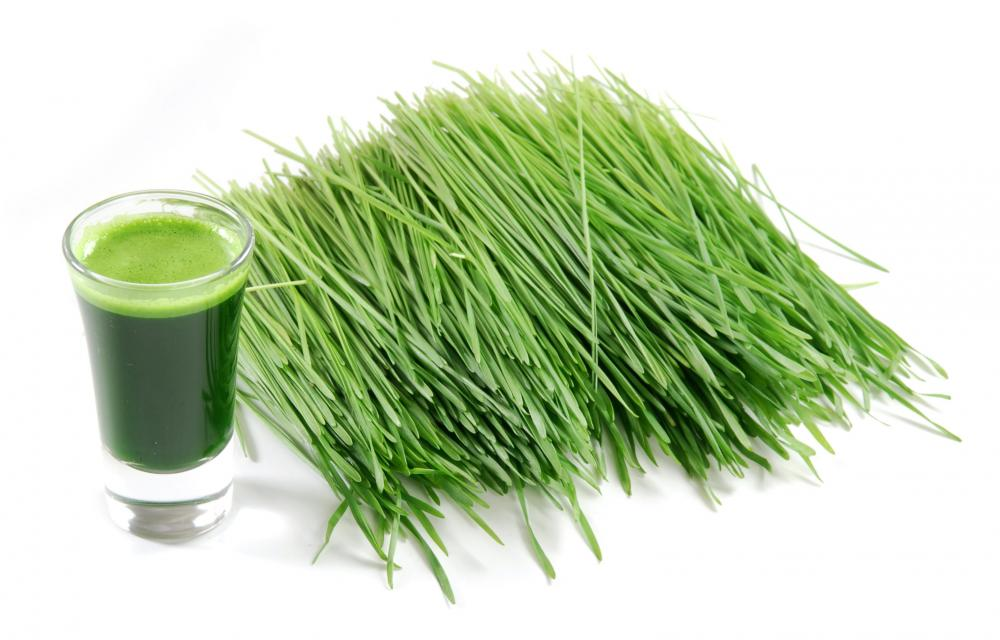 health benefits of wheatgrass tea