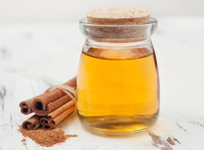 9 Benefits of Honey and Cinnamon for Weight Loss – Secret Recipes