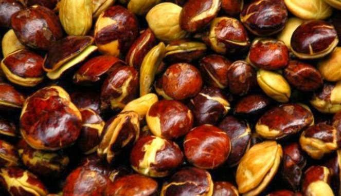 18 Scientific Health Benefits of Dogfruit (#1 Surprising)