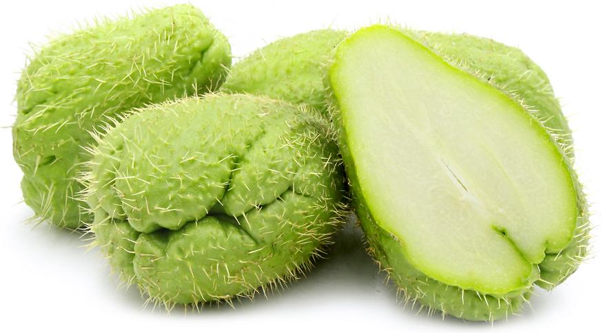 20 scientific health benefits of chayote squash dr heben