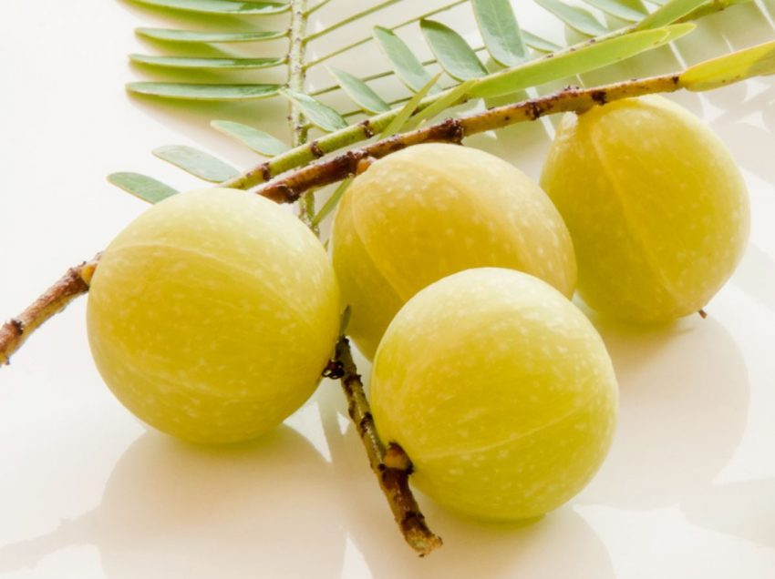 20 Miraculous Benefits of Amla for Beauty Treatments and Health