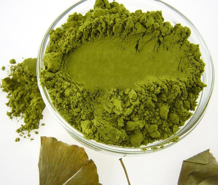 25 Health Benefits of Ginkgo Biloba Extract Based on Research