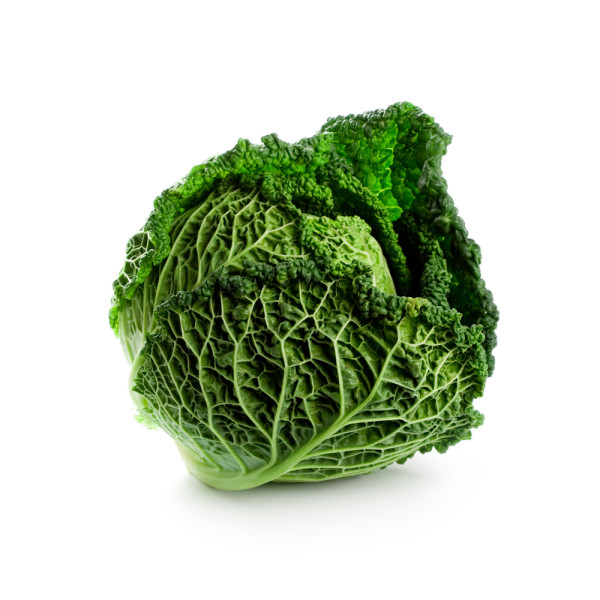 Benefits of Cabbage for Muscle Bodybuilding -The Recommendation