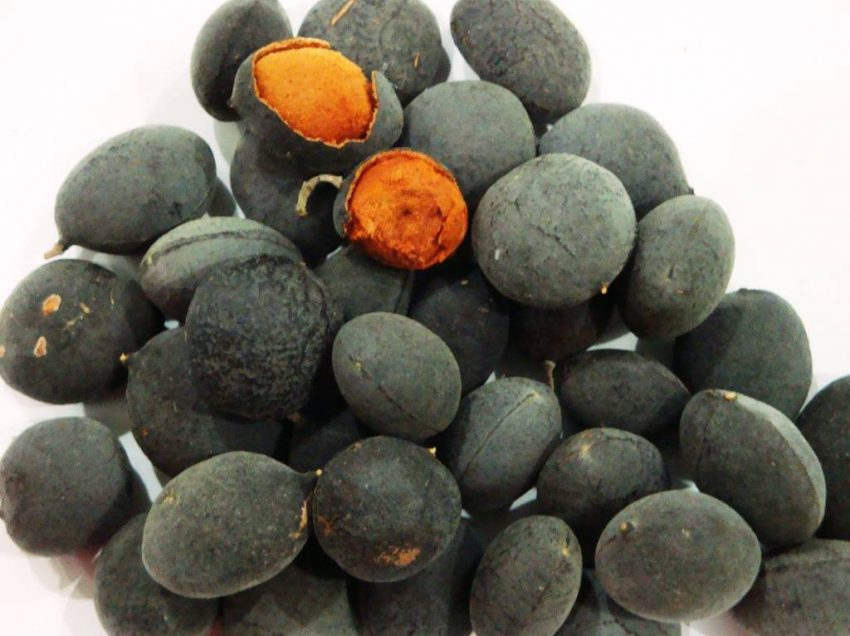 25 Secret Health Benefits of Black Velvet Tamarind