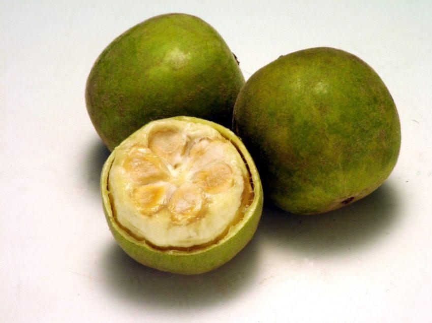 14 Top Health Benefits of Monk Fruit (No.1 is Excellent!)