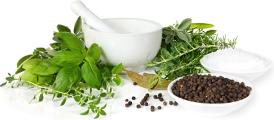 Top 7 Indian Herbs and Their Health Benefits