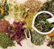Top 10 List of Medicinal Plants for Diabetes Treatment