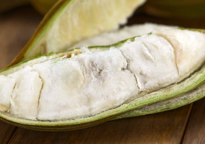 14 Science-Based Health Benefits of Ice Cream Bean